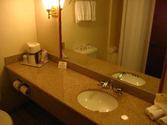 Holiday Inn Express Hotel & Suites West Point : clean bathroom