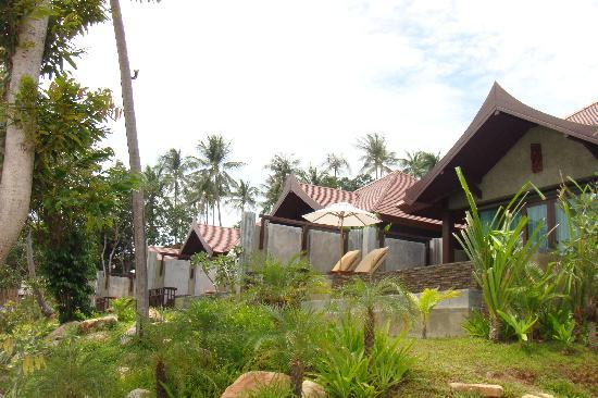 Nora Buri Resort & Spa : view of beach villas from beach / no intimacy