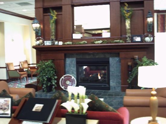 cozy sitting area in lobby picture of hilton garden inn. Black Bedroom Furniture Sets. Home Design Ideas