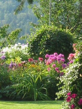 Haus und Garten.. - Picture of Garden View Cottage Bed & Breakfast ...
