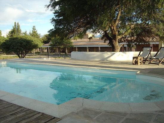 La Vaca Tranquila: La piscine