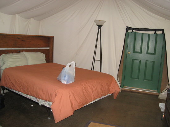 Backcountry @ Damascus: our bed