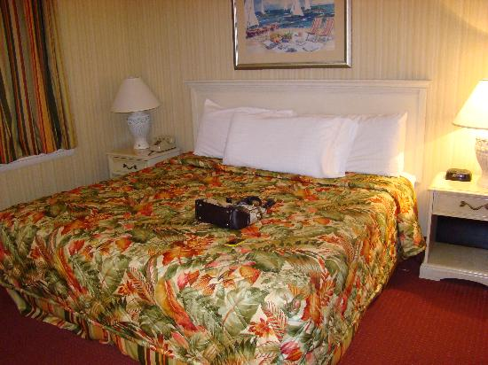 Barclay Towers Resort Hotel: Comfortable King bed with plenty of pillows (pocketbook not part of hotel service)