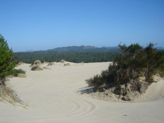 Sandland Adventures: A view at one of the stops