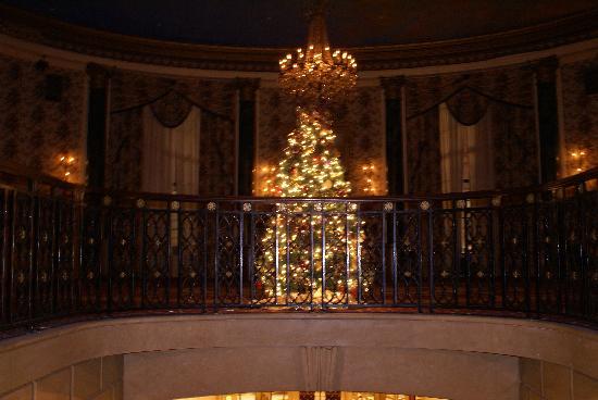 โรงแรมรูเซเวลท์: Another tree