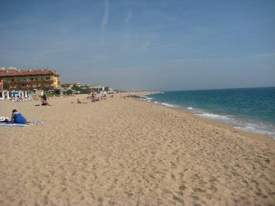 Sumus Hotel Monteplaya: The beach