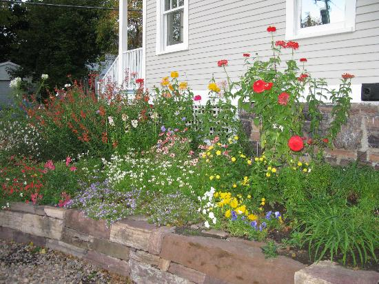 Howard Street Guest House: The side flower bed - fabulous even in mid-October!