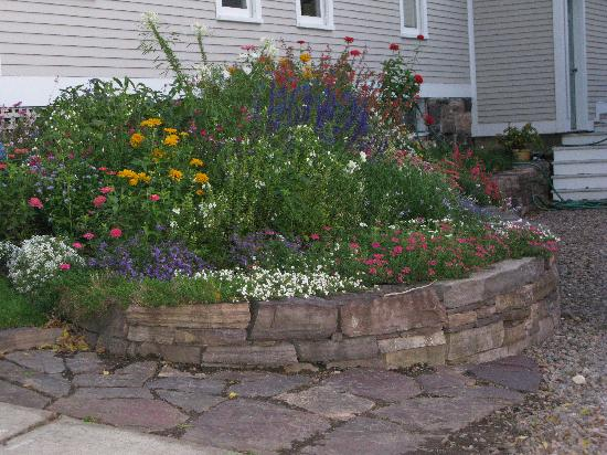 Howard Street Guest House: More of the side flower bed