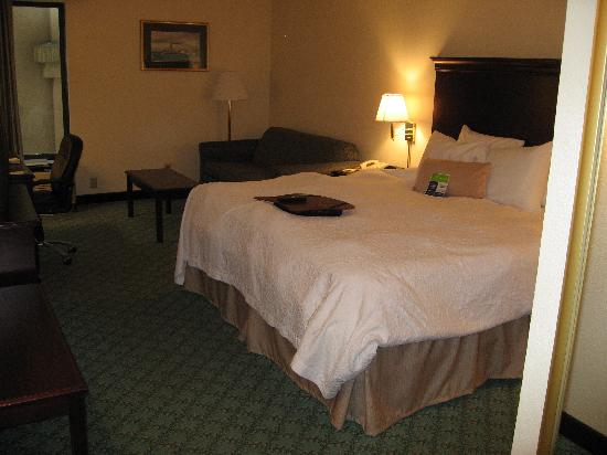 Hampton Inn Frankfort: king room