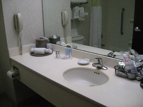 Hampton Inn Frankfort: bathroom