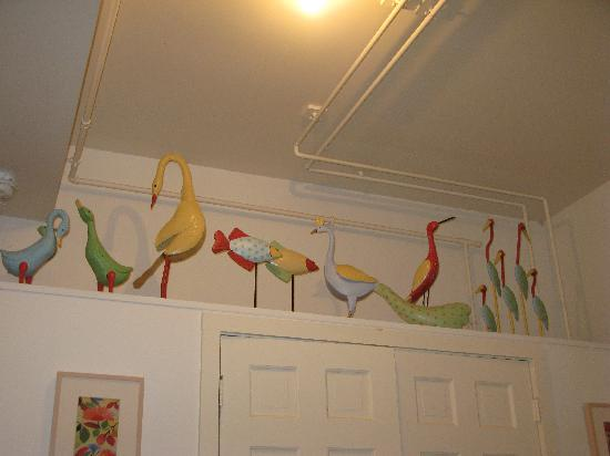 Howard Street Guest House: Birds!