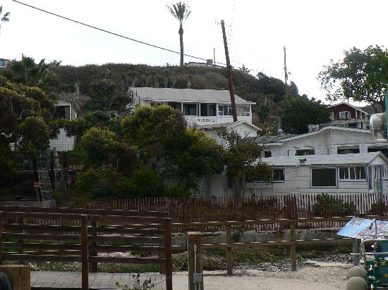 Crystal Cove Beach Cottages: Cottage is large white one in the center.
