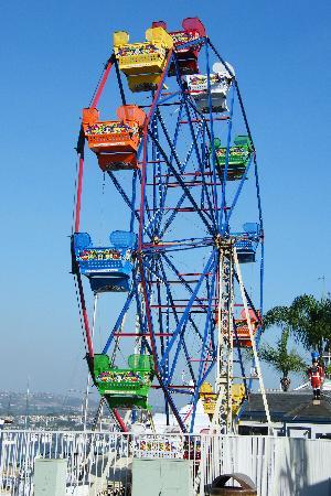 Balboa Ferris Wheel Picture Of Marriott S Newport Coast