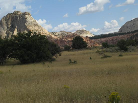 Zion's Main Canyon: Kolob Terrace Road
