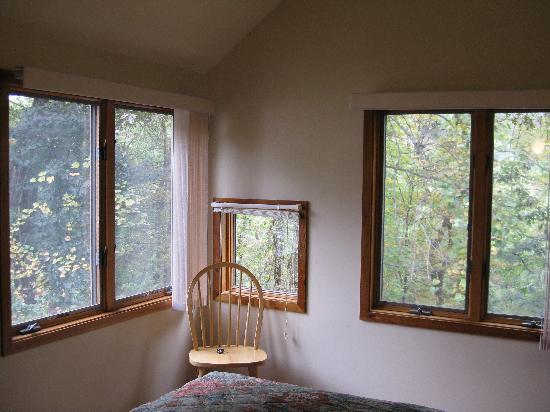 Shawnee River Village 2: MBR Like being in a tree house