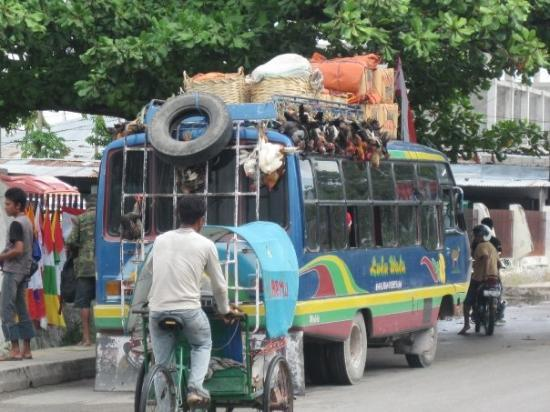 Sumba, Indonesien: Transport en commun... peu commun!