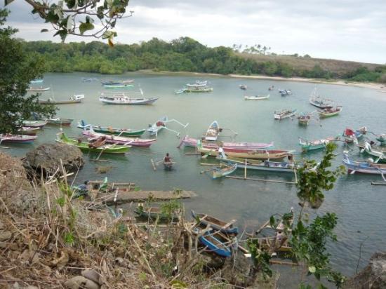 Sumba, Indonesien: Village de pêcheurs