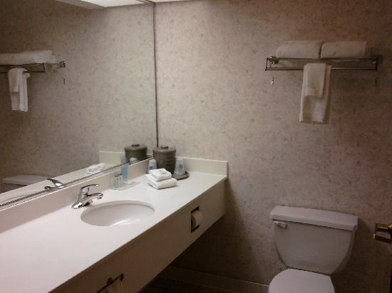 Hampton Inn Portage: Very spacious bathroom.