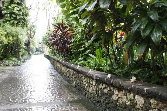 هوتل بوري بامبو: Outdoors after a rainy night