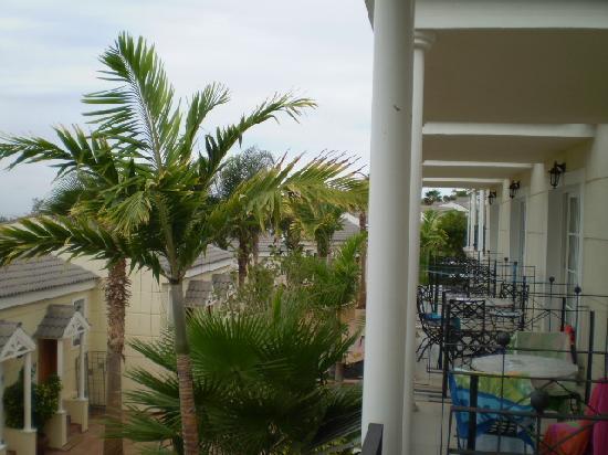 Gran Oasis Resort: Vistas desde la terraza