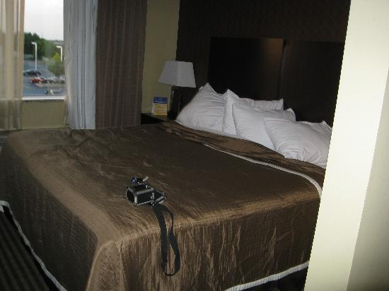 Best Western Plus Olathe Hotel: king bed