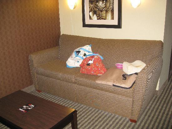 Best Western Plus Olathe Hotel: sleeper sofa