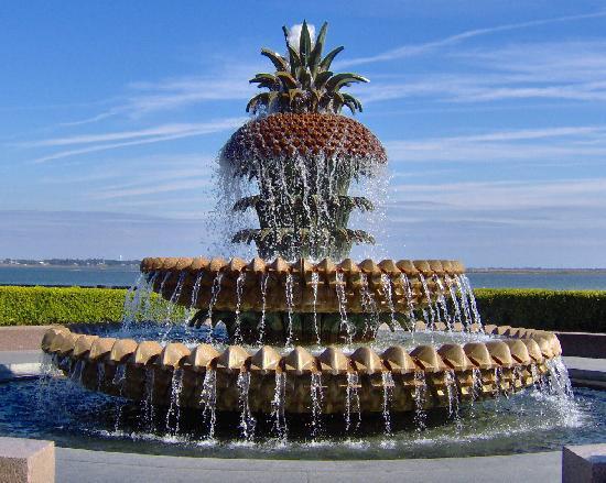 the-pineapple-founta