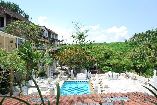 Michi Retreat: The pool