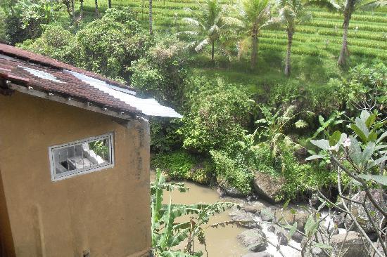 Michi Retreat: Wos River