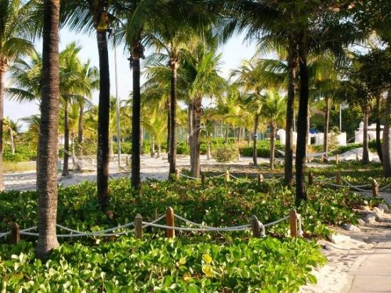 Провиденсиалес: Providenciales, Turks & Caicos