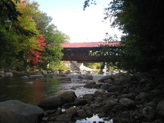 Covered Bridge House: River and Covered Bridge in garden
