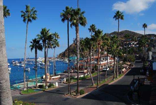 Portofino Hotel : View of Cresent Avenue from Hotel