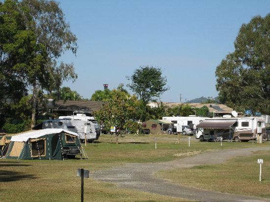 Gold Coast Holiday Park & Motel : You can see the tip of the Movieworld Batwing Spaceshot in the background