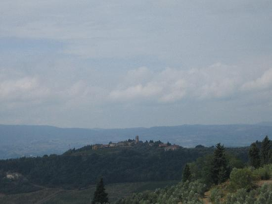 Torre di Ponzano - Chianti area - Tuscany -: View from the Back of the House
