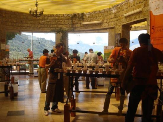 Hotel Gloria Coroico: Coffee tasting - Cup of Excellence
