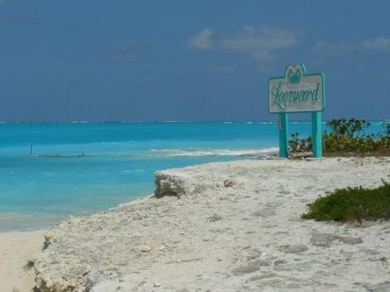 Grace Bay: secluded beach .....absolutely gorgeous here!