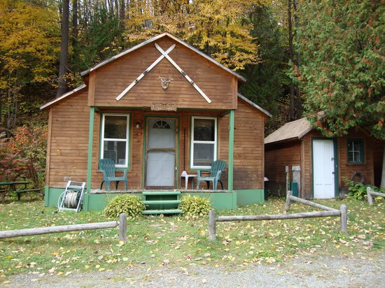 Pine Crest Motel and Cabins: my cabin