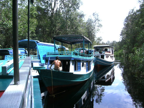 Foto Kalimantan Tengah
