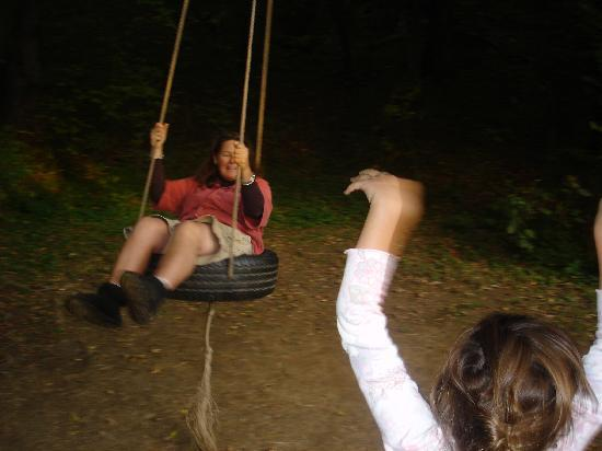 Rocky Acre Farm B&B: tire swing at the crick