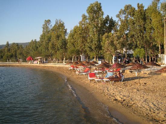 Akbuk, Turquía: Beach