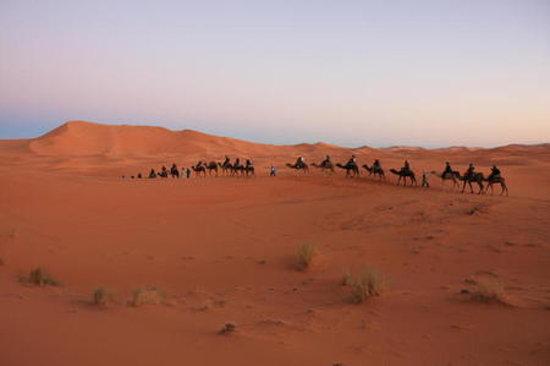 Afrika: desert explor