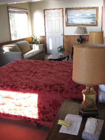 Gorda Springs Resort: Motel Room D