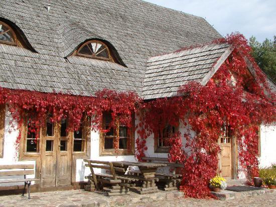Janow Podlaski, Polonia: Zaborec, the Restaurant