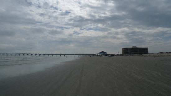 ذا ديونز كوندومونيومز: Dunes Condo from beachfront