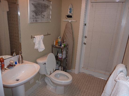 Classic Gay Bathroom Decor