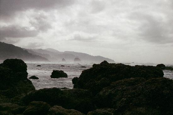 Land's End at Cannon Beach: Cannon Beach in the fog