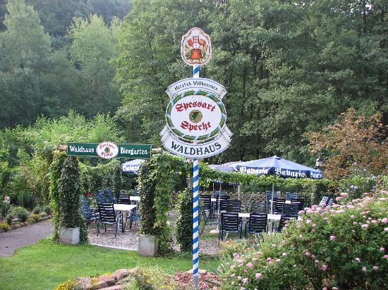 Hotel Waldhaus: Spessart Specht - the finest beer I've found in Germany!