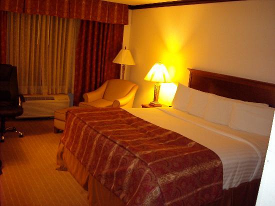 Holiday Inn Chicago Oakbrook: A very nice room---Mine