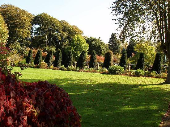 Winterbourne House and Garden: More space