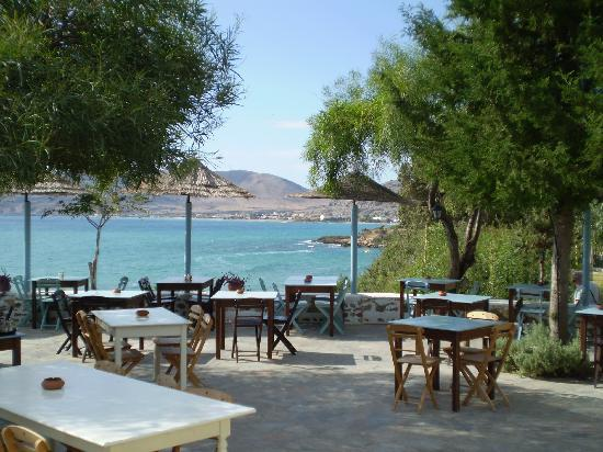 Pefki Islands Resort: Philosophia Taverna